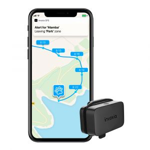 Invoxia GPS Pet Tracker